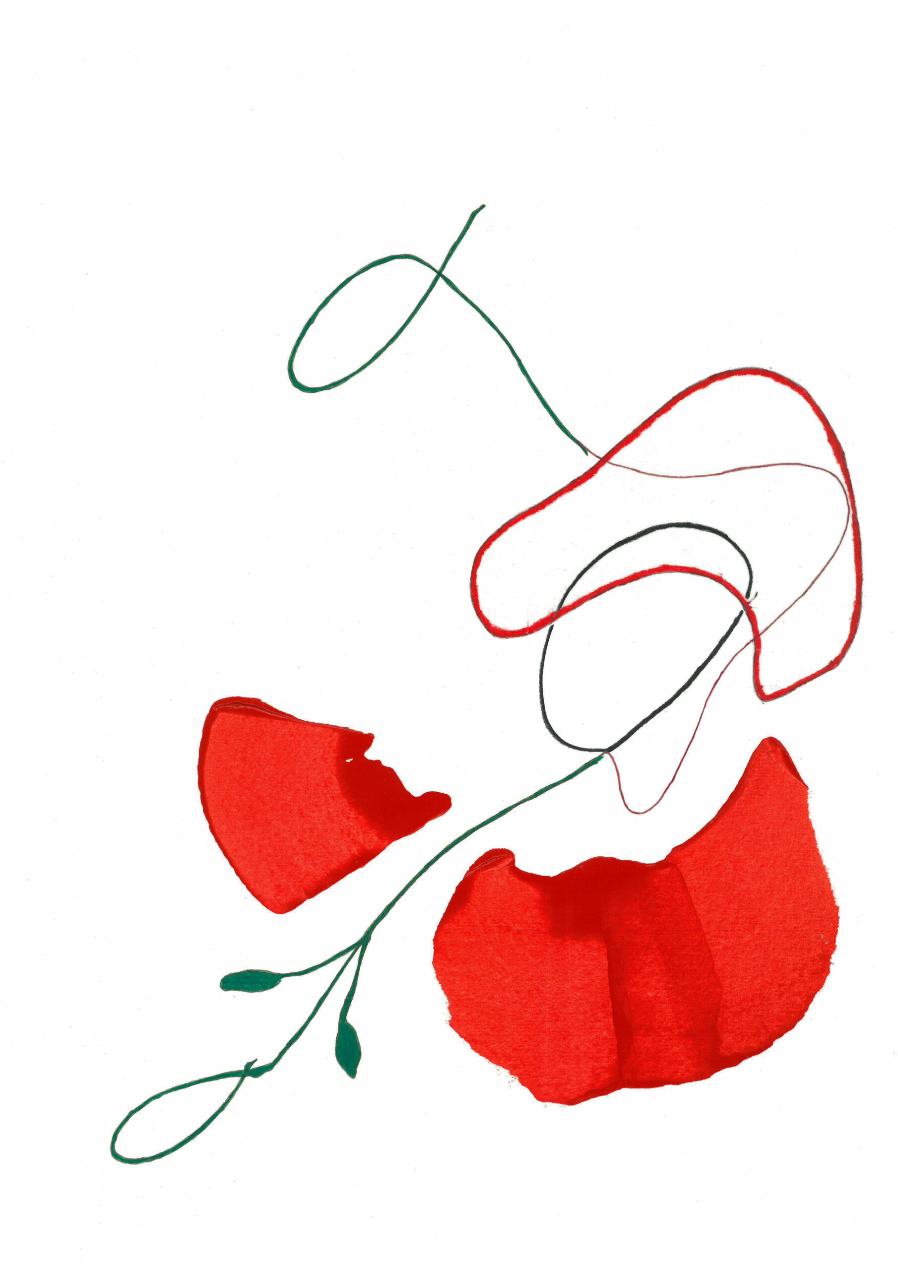 Poppy-2-min